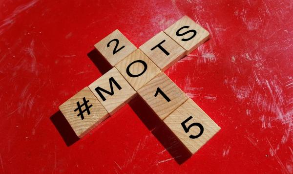 MES MOTS 2015