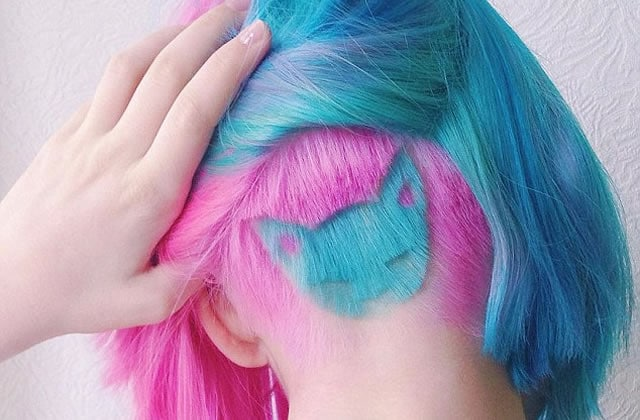 rainbow-cat-coiffure